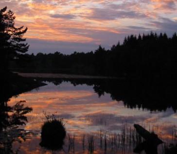 Im Fjord der Liebe, Folge 2