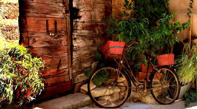 Kitsch, Groschenroman, Liebe, Herzschmerz, Liebesroman, Carola Pigisch, Provence, Oliven